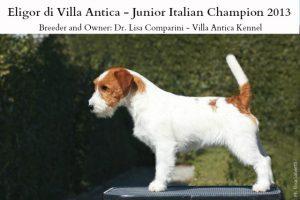 eligor junior italian champion